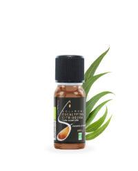huile_essentielle_eucalyptus_citriodora_bio_noa_nature